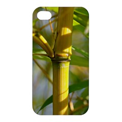 Bamboo Apple iPhone 4/4S Hardshell Case