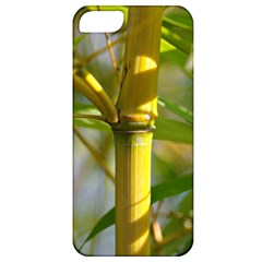 Bamboo Apple iPhone 5 Classic Hardshell Case