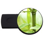 Bamboo 4GB USB Flash Drive (Round) Front