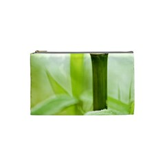 Bamboo Cosmetic Bag (small)