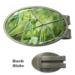 Bamboo Money Clip (Oval)