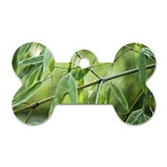 Bamboo Dog Tag Bone (Two Sided)