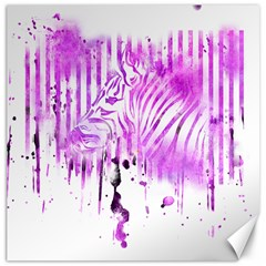 The Hidden Zebra Canvas 16  X 16  (unframed)