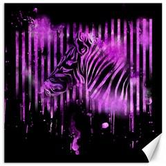 The Hidden Zebra Canvas 20  x 20  (Unframed)
