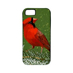 Cardinal Apple iPhone 5 Classic Hardshell Case (PC+Silicone)