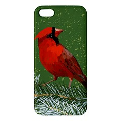 Cardinal iPhone 5 Premium Hardshell Case