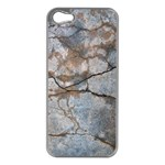 Stone Apple iPhone 5 Case (Silver) Front