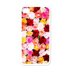 Stop & Smell the iPhone Apple iPhone 4 Case (White)