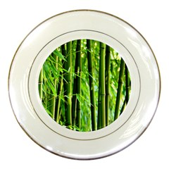 Bamboo Porcelain Display Plate