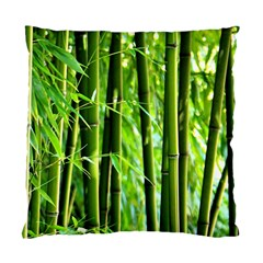 Bamboo Cushion Case (Single Sided)