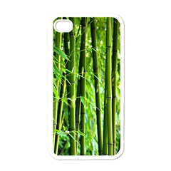 Bamboo Apple iPhone 4 Case (White)