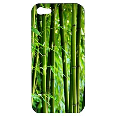 Bamboo Apple iPhone 5 Hardshell Case