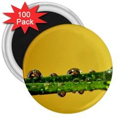 Drops 3  Button Magnet (100 pack)