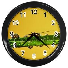 Drops Wall Clock (Black)