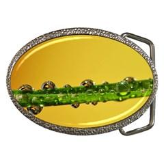 Drops Belt Buckle (Oval)