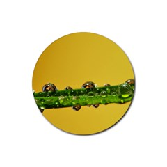 Drops Drink Coaster (round)