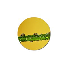 Drops Golf Ball Marker 4 Pack