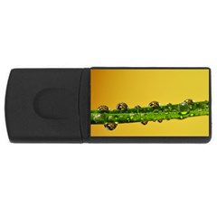 Drops 2GB USB Flash Drive (Rectangle)