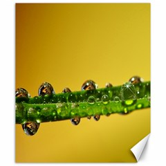 Drops Canvas 20  X 24  (unframed)