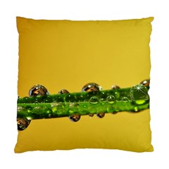 Drops Cushion Case (two Sided)
