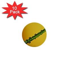 Drops 1  Mini Button (10 pack)