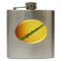 Drops Hip Flask