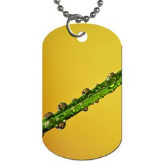 Drops Dog Tag (two Sided)