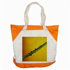 Drops Accent Tote Bag