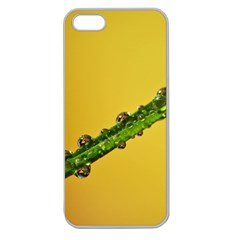 Drops Apple Seamless Iphone 5 Case (clear)