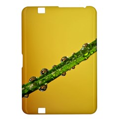 Drops Kindle Fire HD 8.9  Hardshell Case