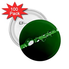 Drops 2.25  Button (100 pack)