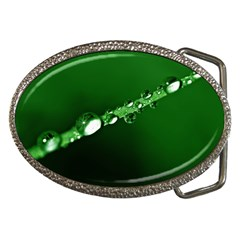 Drops Belt Buckle (Oval)