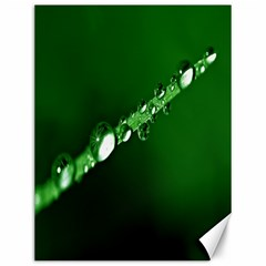 Drops Canvas 12  X 16  (unframed)