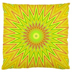 Mandala Large Cushion Case (Single Sided)