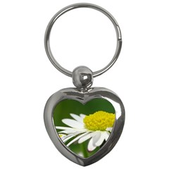 Daisy With Drops Key Chain (Heart)