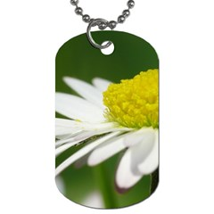 Daisy With Drops Dog Tag (one Sided)