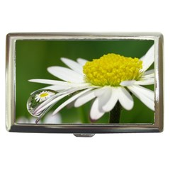 Daisy With Drops Cigarette Money Case