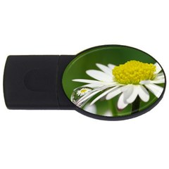 Daisy With Drops 2GB USB Flash Drive (Oval)