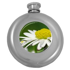 Daisy With Drops Hip Flask (Round)