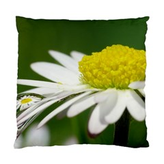 Daisy With Drops Cushion Case (Two Sided)