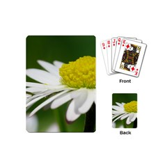 Daisy With Drops Playing Cards (Mini)