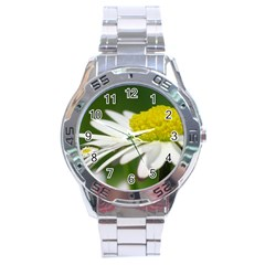 Daisy With Drops Stainless Steel Watch