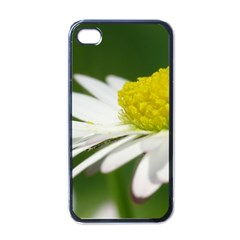 Daisy With Drops Apple Iphone 4 Case (black)