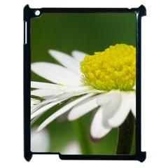 Daisy With Drops Apple iPad 2 Case (Black)