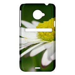 Daisy With Drops HTC Evo 4G LTE Hardshell Case