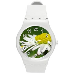 Daisy With Drops Plastic Sport Watch (Medium)