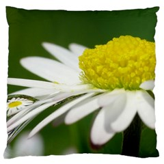 Daisy With Drops Large Cushion Case (Single Sided)