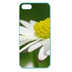 Daisy With Drops Apple Seamless Iphone 5 Case (color)