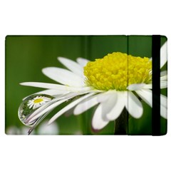 Daisy With Drops Apple Ipad 2 Flip Case