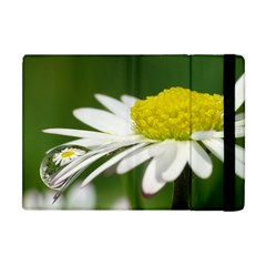Daisy With Drops Apple Ipad Mini Flip Case